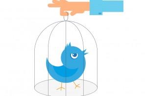 Piccola guida per migliorare la tua azienda con Twitter