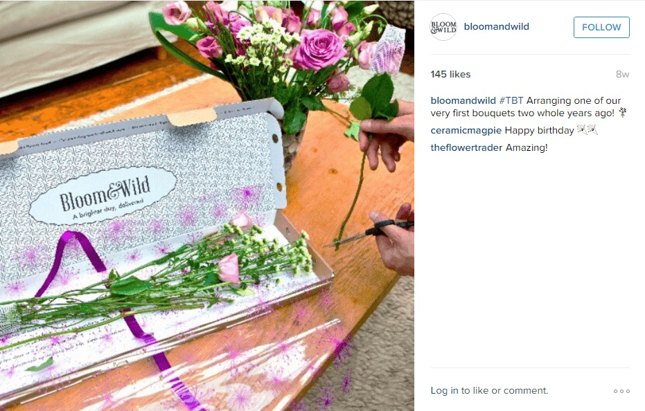 Bloom Wild Instagram Advertising