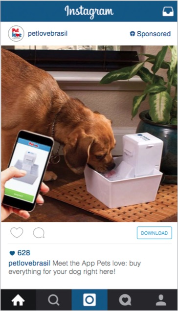 Pet Love Instagram Advertising